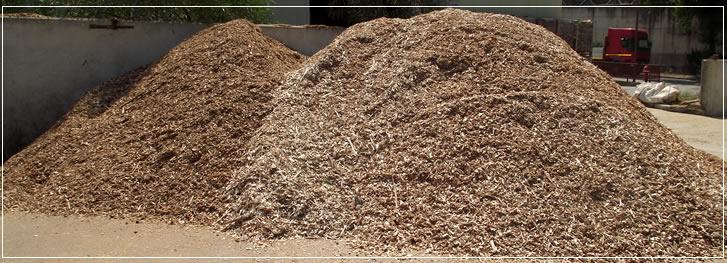 Aerazione forzata eta caldaie legna for Eta caldaie legna